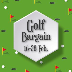 画像2 _Golf B