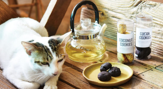 猫ちゃんがお出迎え。カフェも併設のエスニック雑貨店